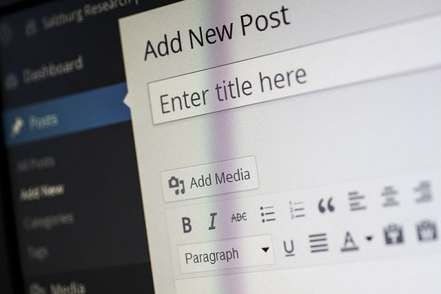 CMS וקידום אתר